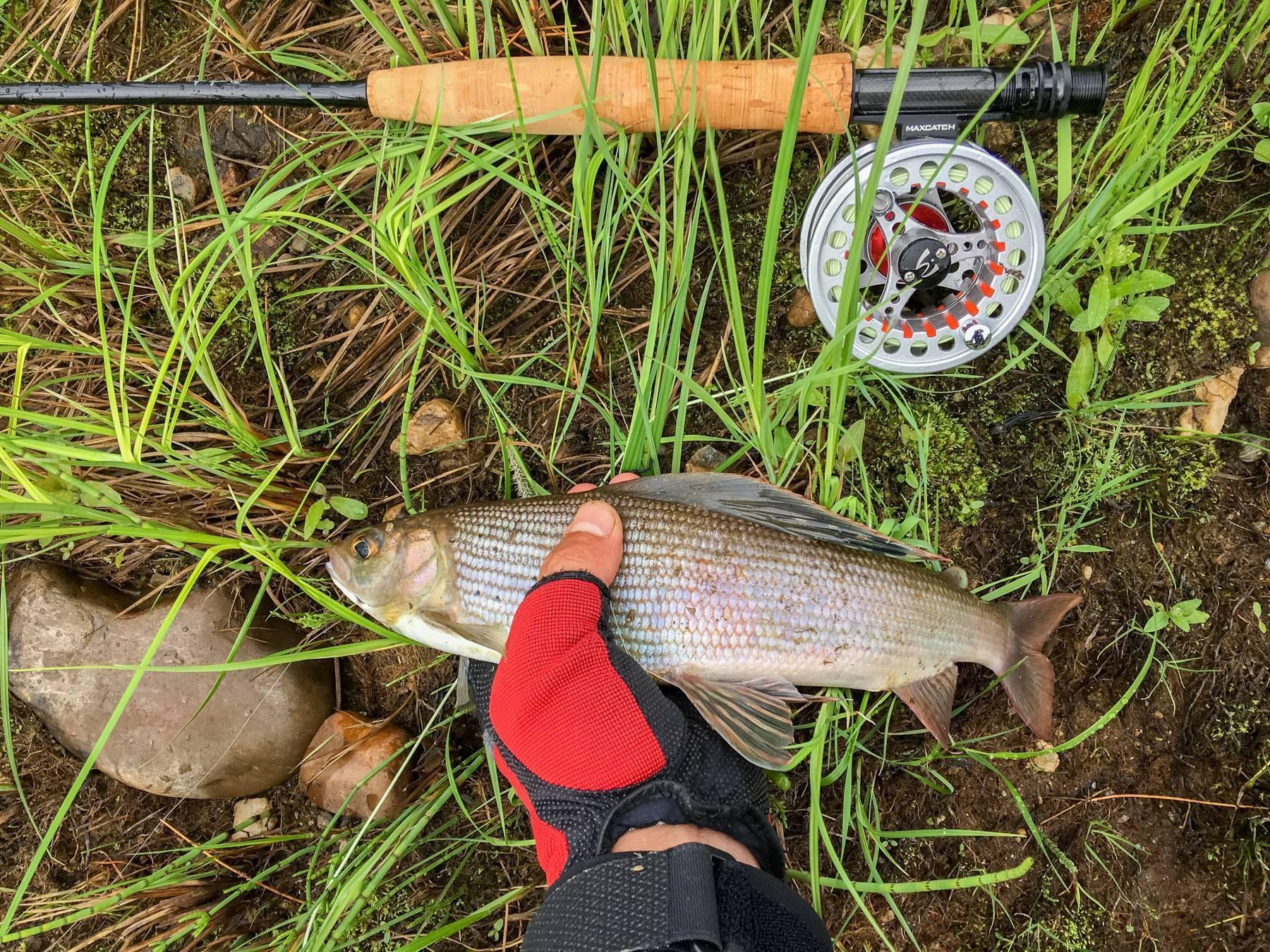 Кемеровская рыбалка: водоёмы кузбасса, платная и бесплатная рыбалка в области | berlogakarelia.ru