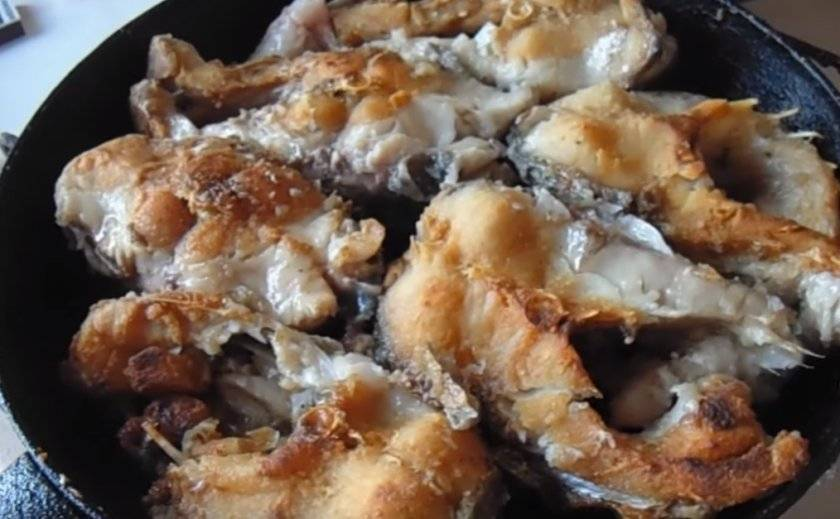 Рецепты приготовления жереха (26 фото): какие блюда можно приготовить из этой рыбы? как сделать вкусные котлеты и как приготовить вяленый жерех в домашних условиях?