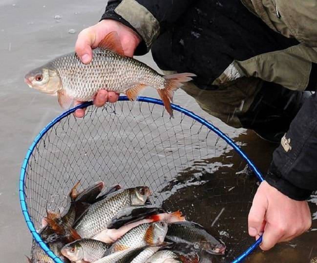 Ловля на мормышку осенью ~ поплавочная удочка с мормышкой