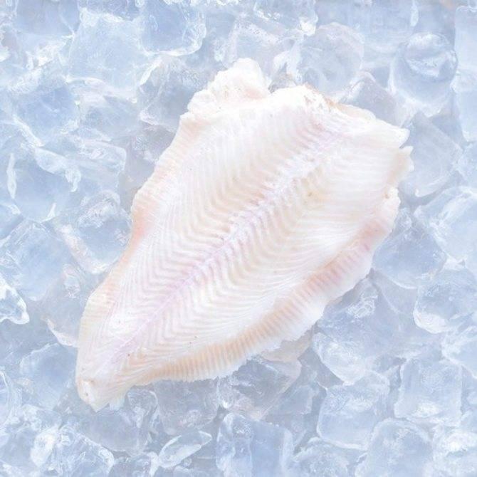 Рыба морской язык: польза и вред, калорийность, рецепты с фото | zaslonovgrad.ru