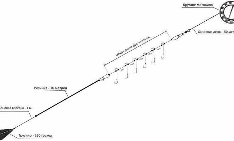 Рыбалка на чехонь: как ловить эту рыбу на резинку, подбор снастей
