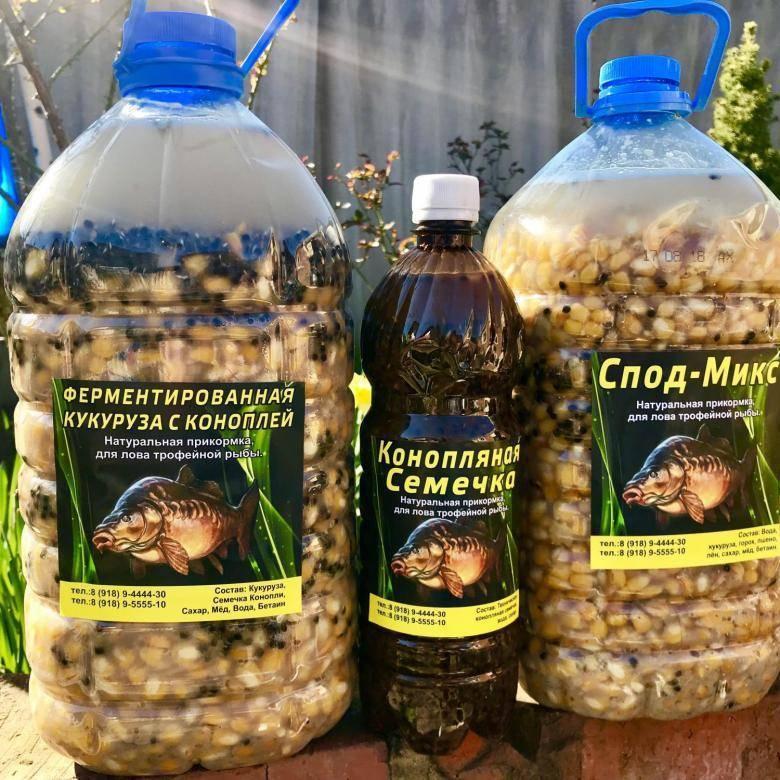 Ферментированная кукуруза для рыбалки: приготовление «пьяной» кукурузы. как ее хранить? как правильно сделать ферментацию своими руками?