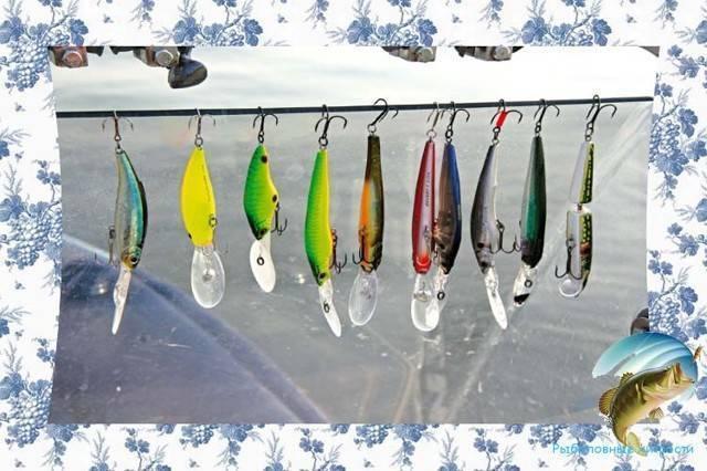 Ловля рыбы троллингом для начинающих (приманки, техника и тактика, особеннности водоемов)