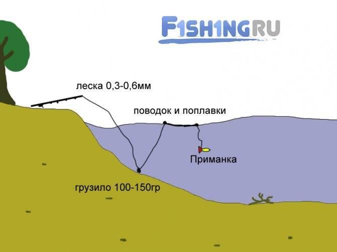 Ловля сома на квок: секреты успешной рыбалки и тактика ловли