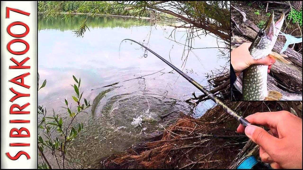 Ловля щуки на спиннинг по сезонам - na-rybalke.ru