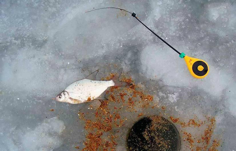 Рыбалка на плотву зимой, ловля плотвы на безмотыльные мормышки