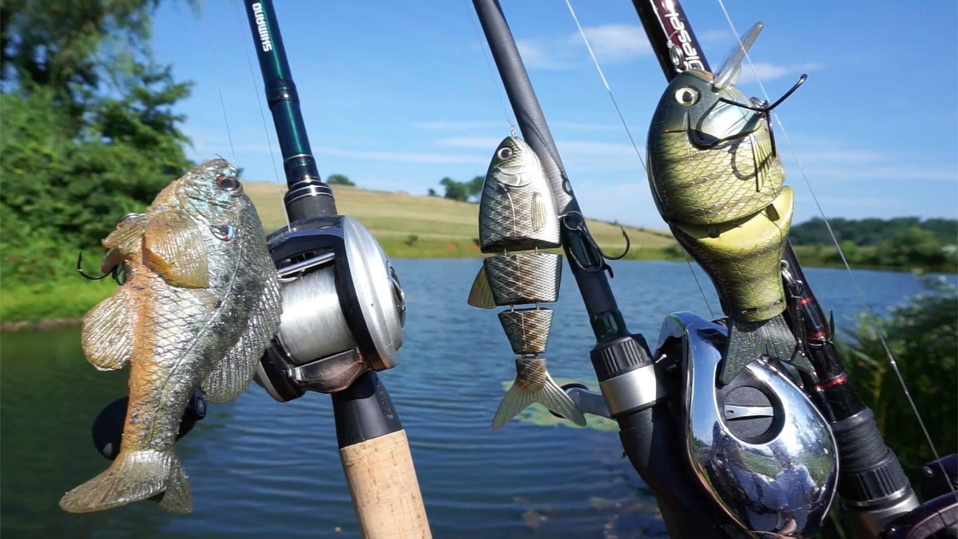 Современный спиннинг – экскурс в street fishing – рыбалка онлайн