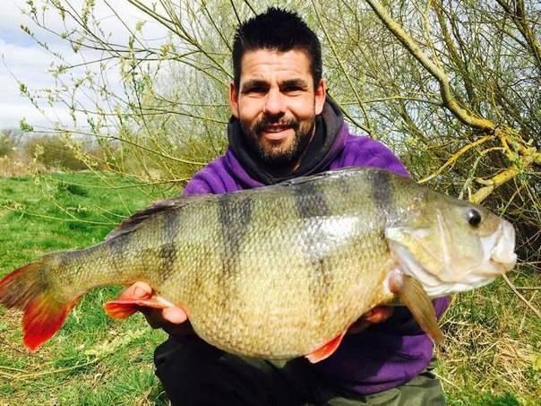 Самый большой пойманный окунь – рыбалке.нет