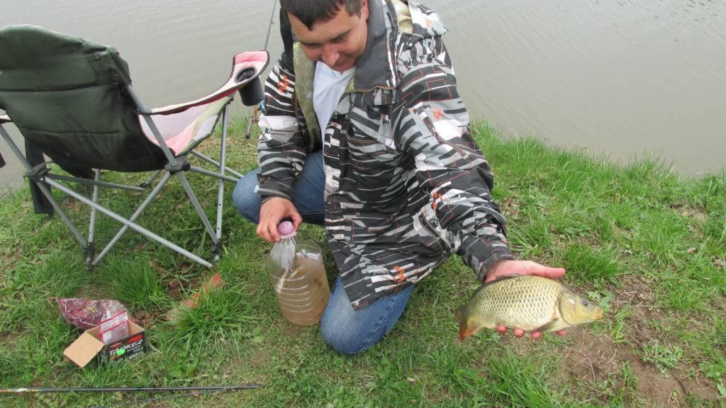 Рыболовные туры и платная рыбалка в республике марий эл