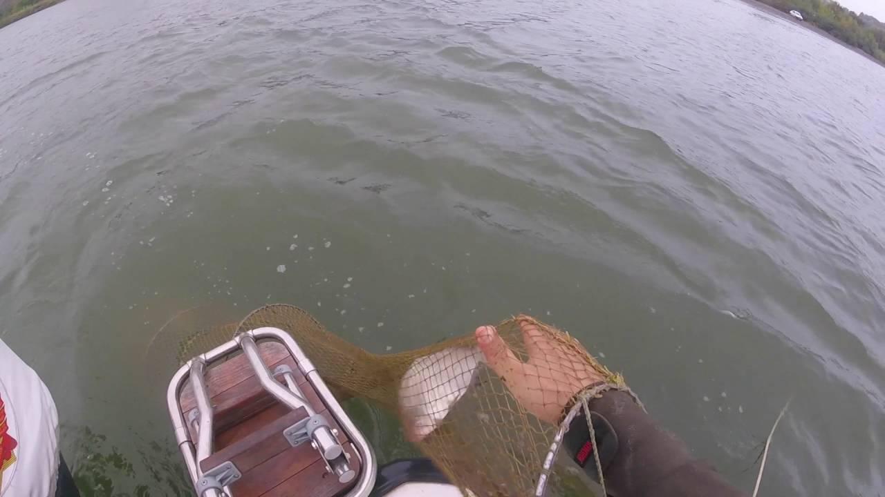 Рыболовные базы в ростове-на-дону и ростовской области