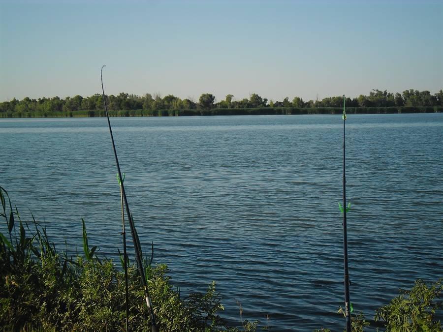 Рыбалка в краснодарском крае - 10 лучших мест | рыбалка на дону