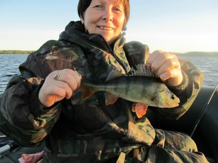 Рыбалка в ленинградской области: места и особенности