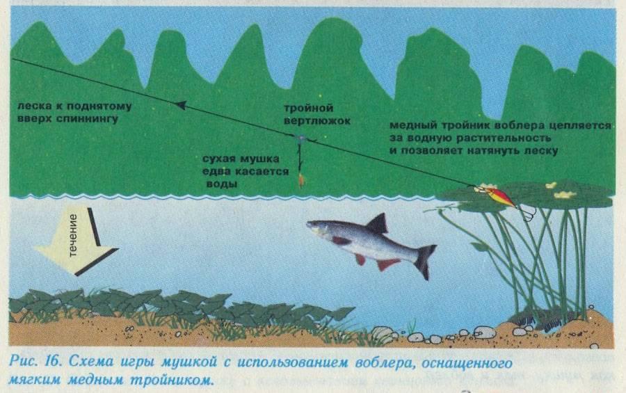 Ловля хариуса на мушку спиннингом в ручьях и малых реках