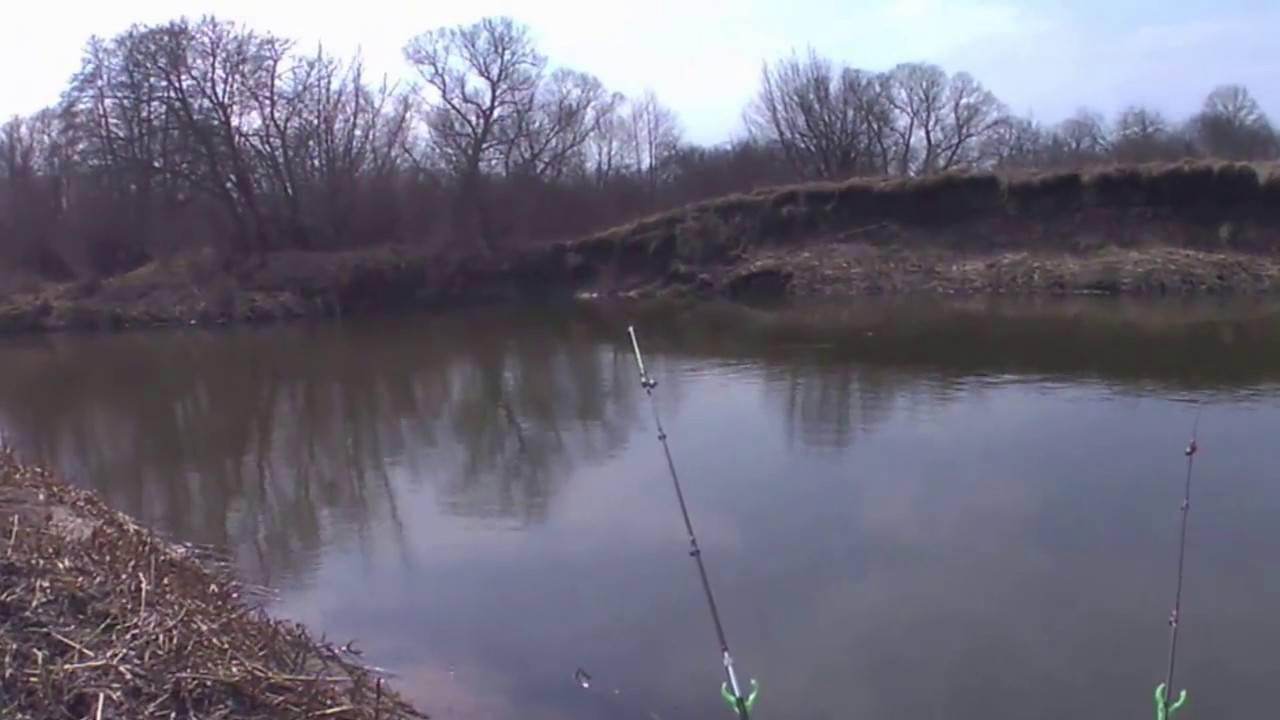 Ловля голавля в апреле - читайте на сatcher.fish
