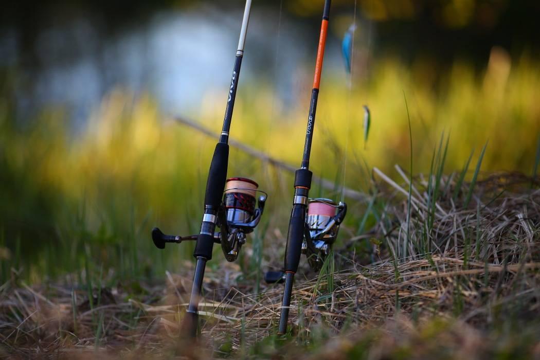 """Как выбрать удочку для летней рыбалки? советы, видео — журнал """"рутвет"""""""