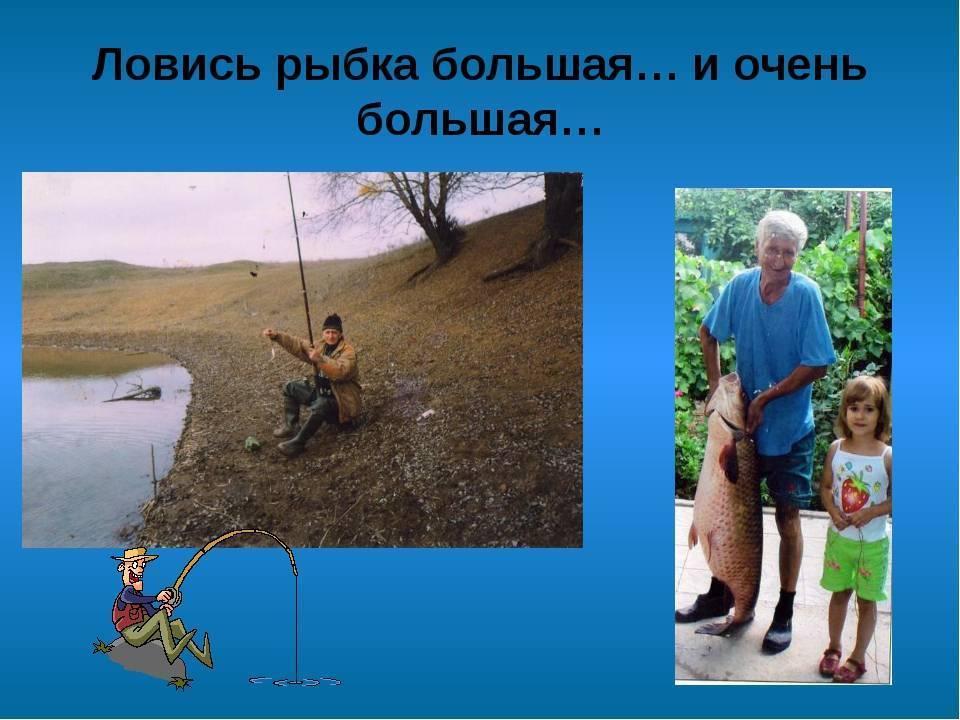 Ловись рыбка большая и маленькая | lemur59.ru
