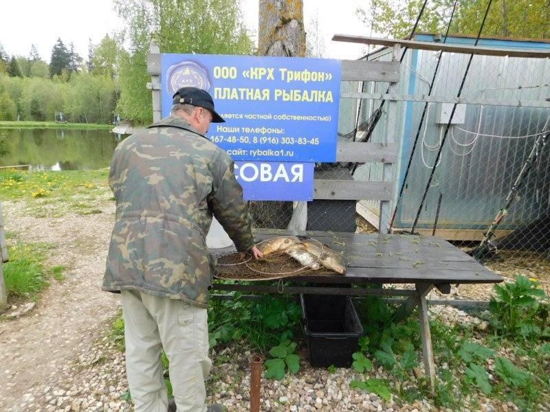 База отдыха «крутояр» в костромской области - цены 2021, фото, отзывы