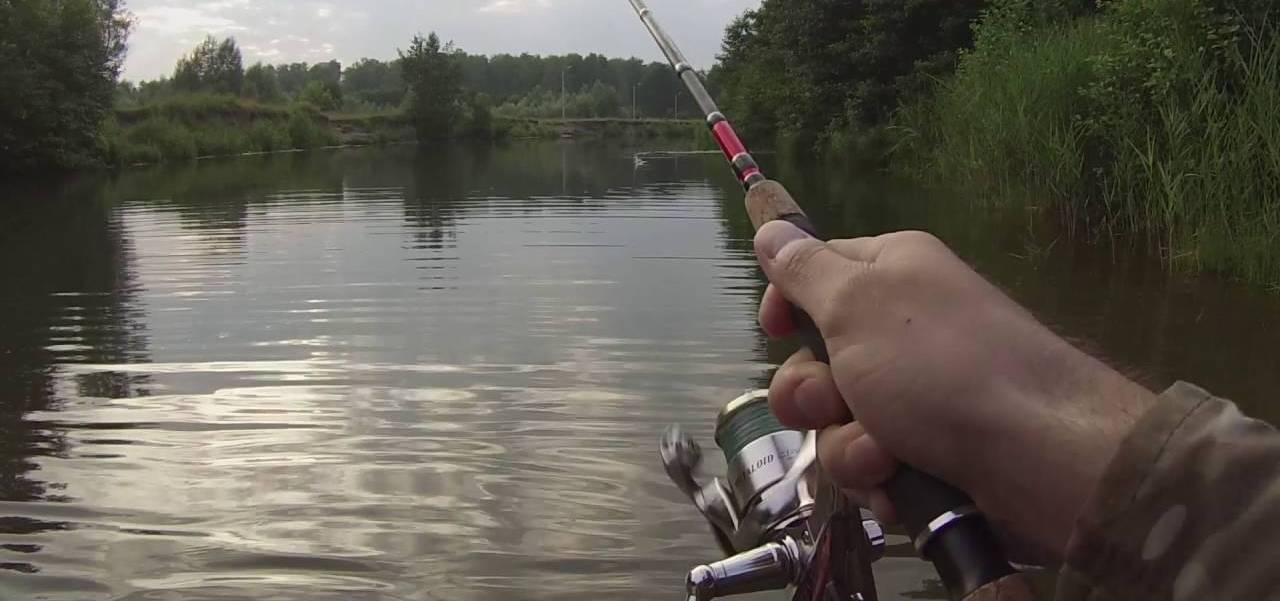 Как поймать рыбу на спиннинг - советы для начинающих рыбаков