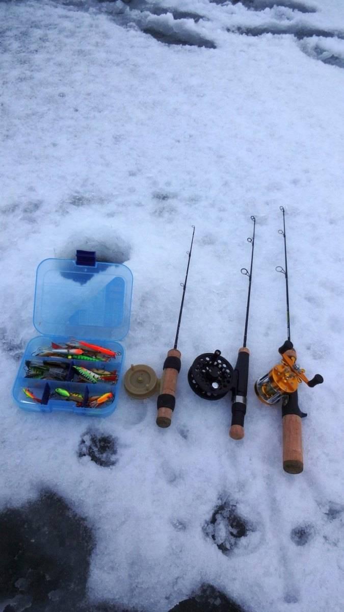 Где искать окуня для ловли по первому льду