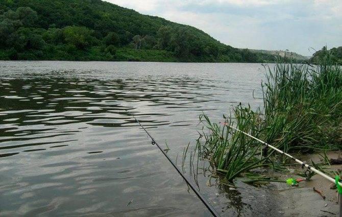 Рыбалка в липецкой области и в липецке, где ловится рыба в липецкой области.