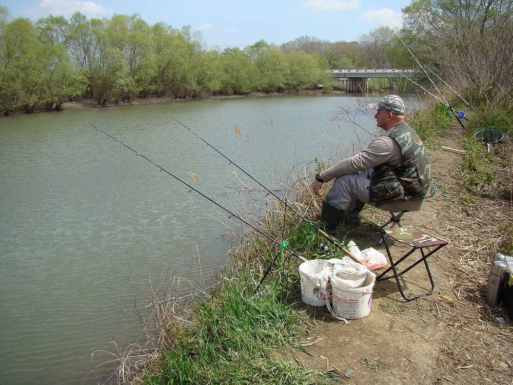Рыбалка в таганроге: описание местных водоемов, где лучше ловить