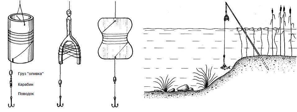 Как наловить живца летом: виды, снасти, методы ловли и способы сохранить живца