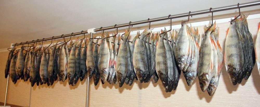 Как вялить рыбу в домашних условиях осенью, зимой и летом: рецепт как правильно засолить, где лучше сушить, сколько дней должна вялиться и при какой температуре