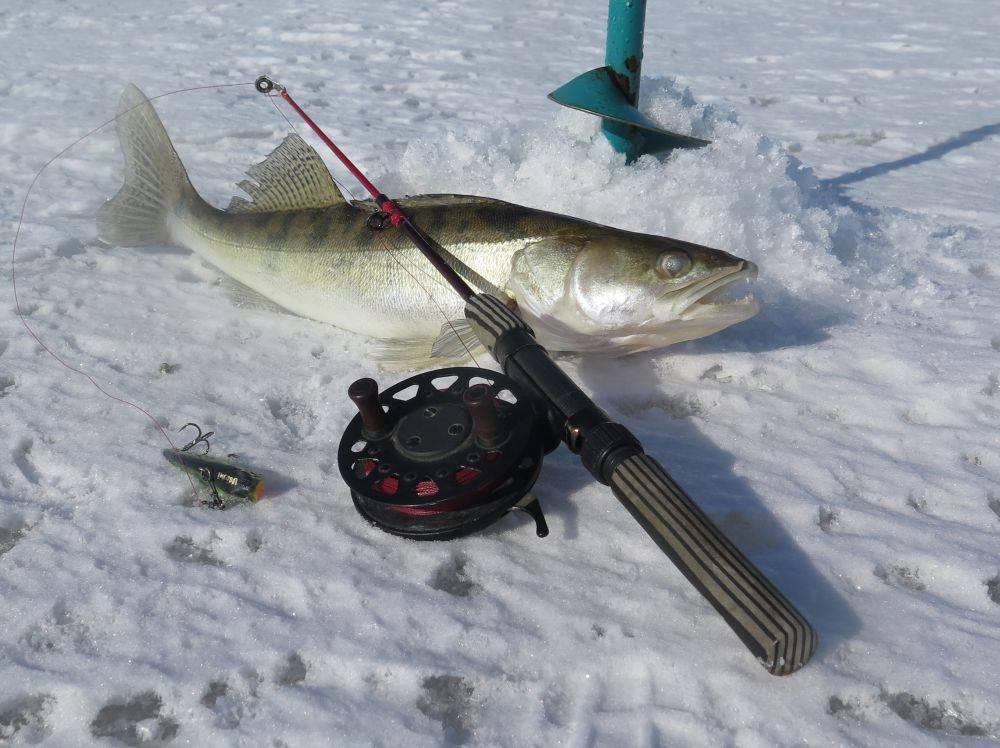 Удочки для зимней рыбалки: как выбрать и собрать оснастку удилища