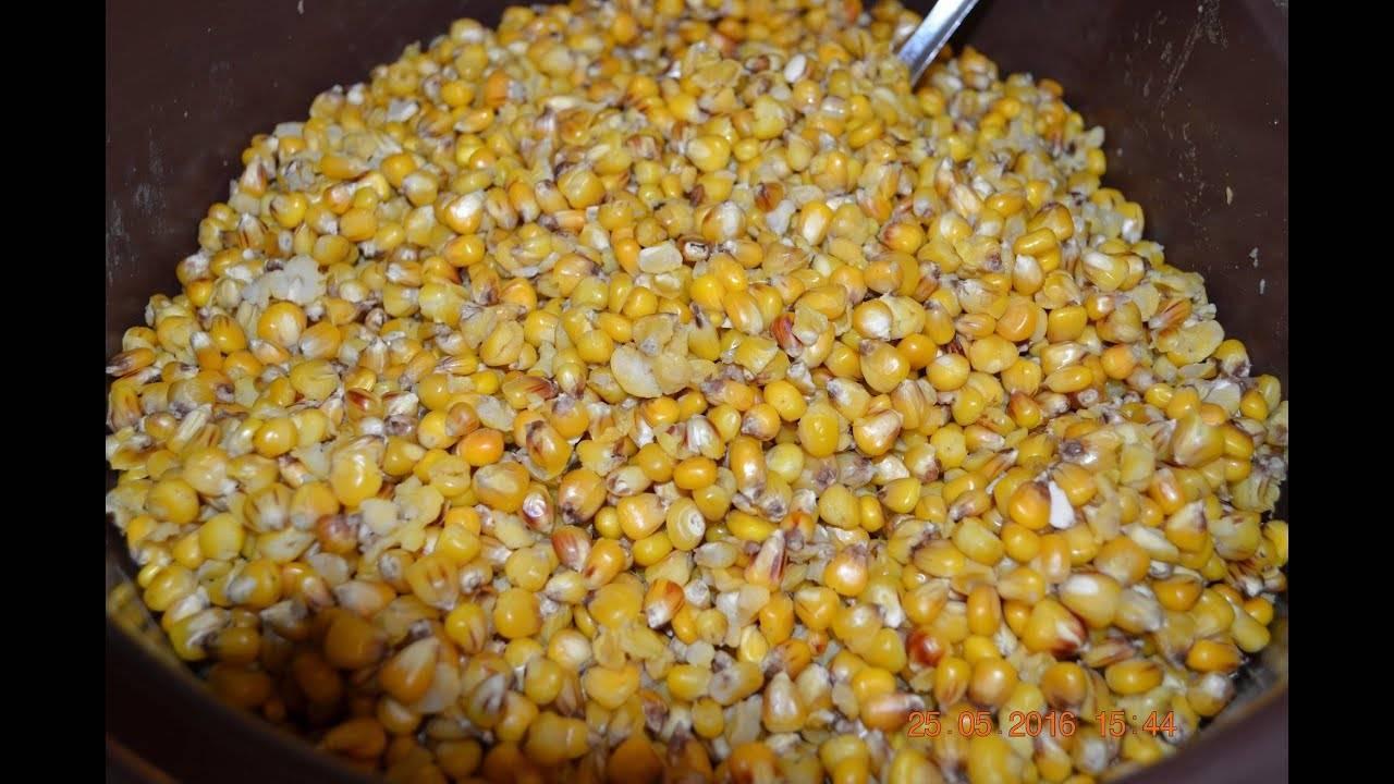 Приготовление ферментированной кукурузы для рыбалки