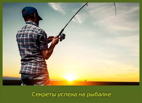 Зимний спиннинг. секреты успешной рыбалки – рыбалке.нет