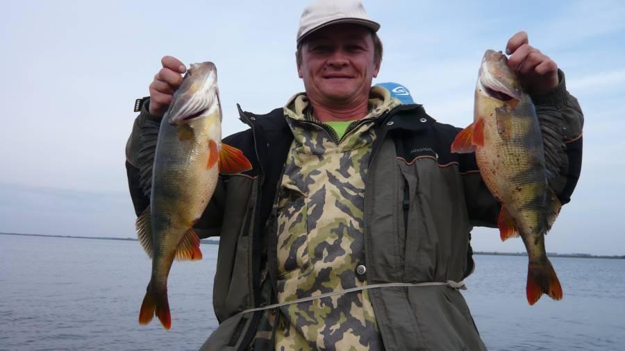 Рыбалка в томске и томской области: лучшие места для ловли, какая рыба водится