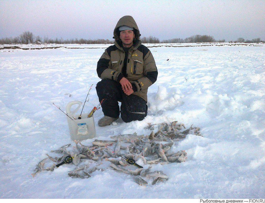 - подробный прогноз клёва и погоды в якутске на 3 дня и 15 дней