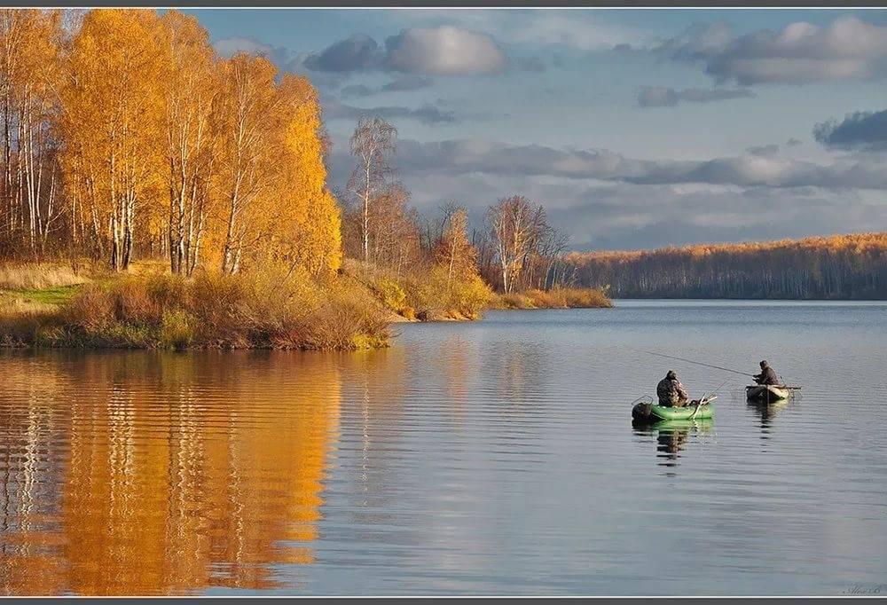 Дело наживное: где в подмосковье отвести душу любителям зимней рыбалки