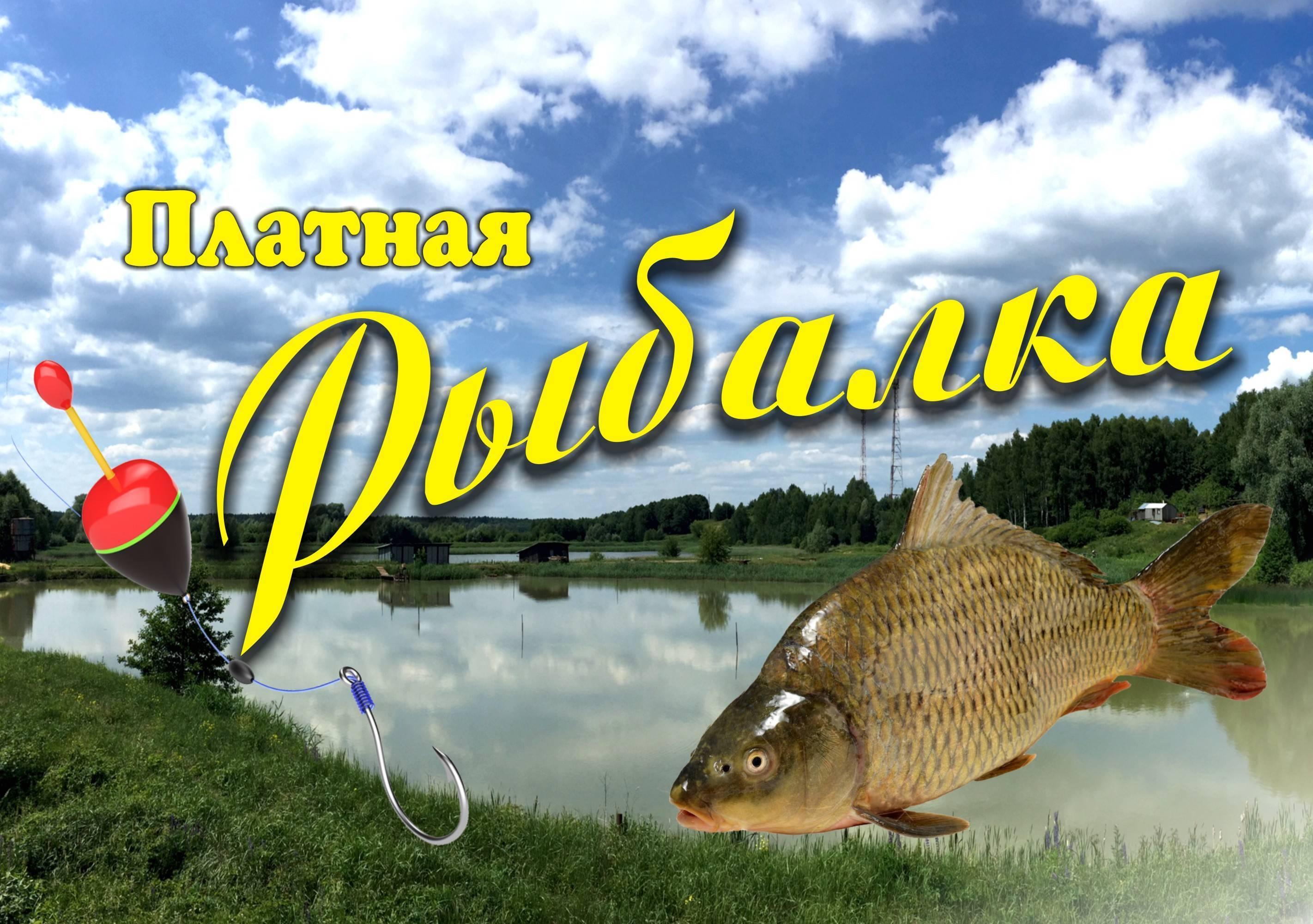 Рыбалка во владимирской области: топ мест для ловли