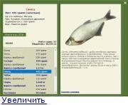 Сопа (белоглазка): описание рыбы, места обитания, нерест, образ жизни и способы ловли