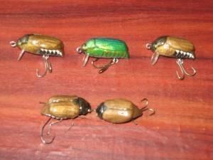 Ловля голавля на майского жука: техника, оснастка, снасть и место