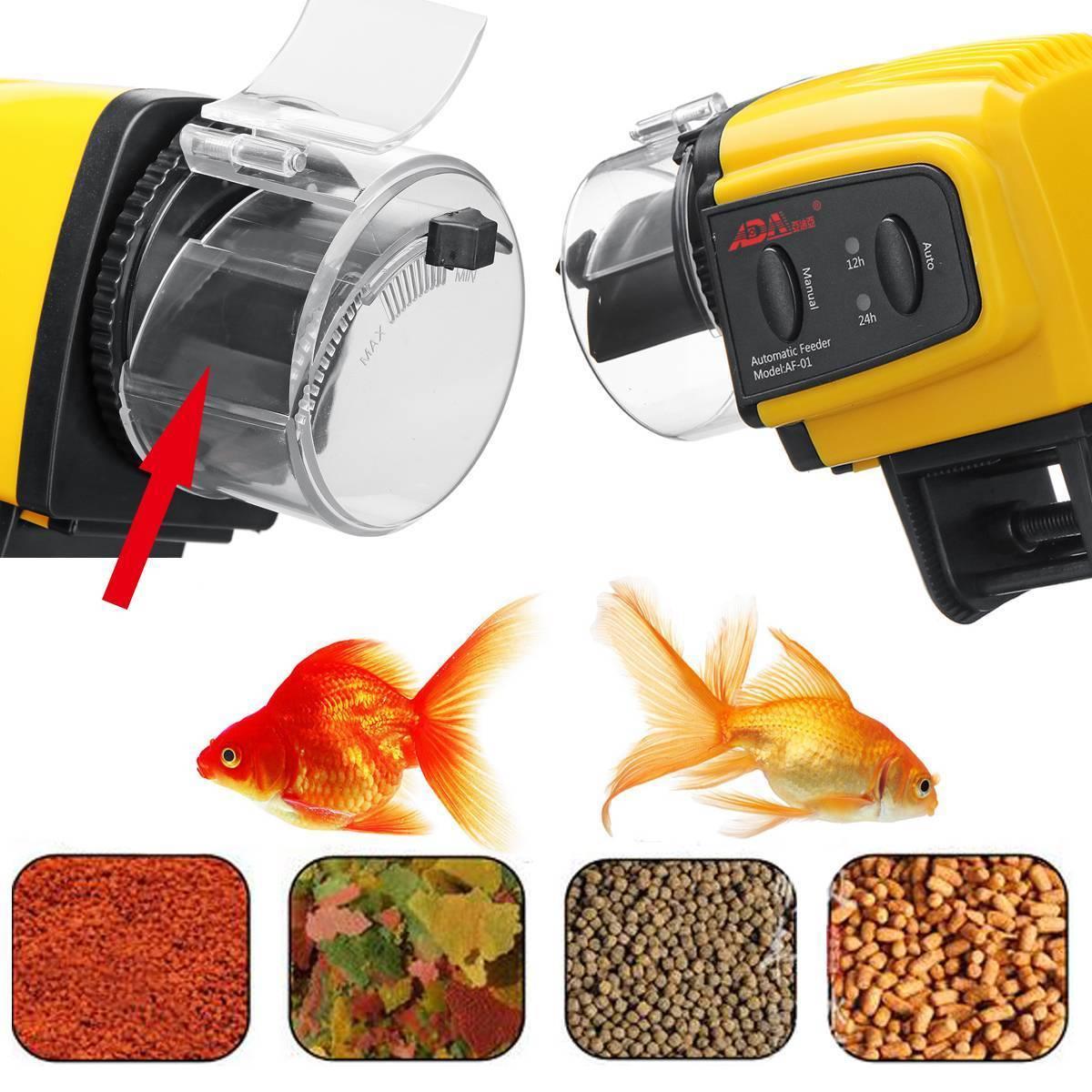 Кормушки для аквариума (16 фото): зачем нужна автоматическая кормушка для аквариумных рыб? электронные и другие модели для рыбок