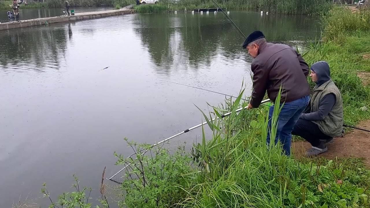 Рыбалка во владимирской области: места и особенности