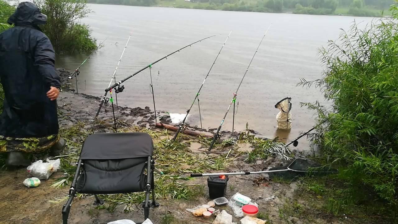 В какую погоду лучше ловить рыбу, как погодные условия влияют на клев