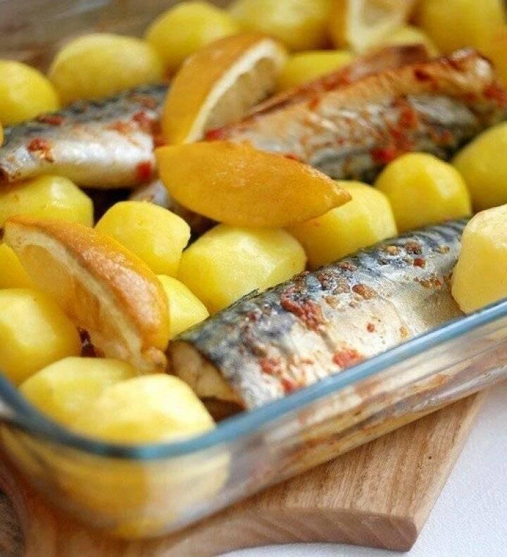 Картофельная запеканка с рыбой в духовке — 9 рецептов приготовления вкусной запеканки