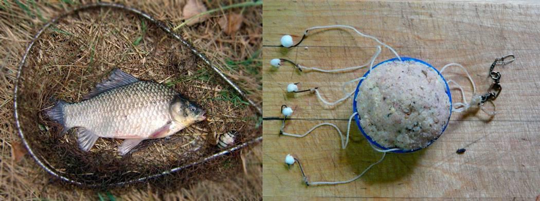 Ловля на соску: специфика и секреты лова