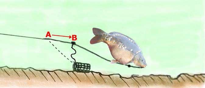Ловля сазана на фидер - снасти, оснастка и выбор прикормки. как ловить сазана фидером на течении