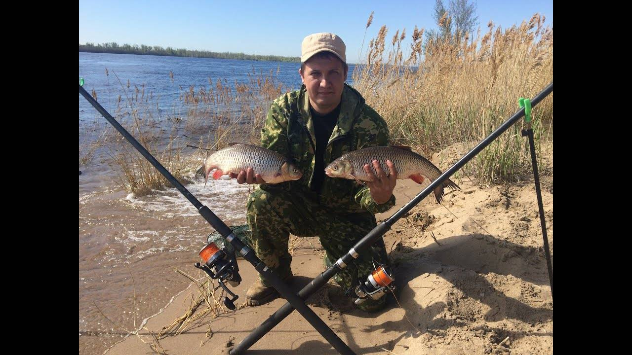 Весенняя ловля на фидер в реках с течением и в стоячей воде
