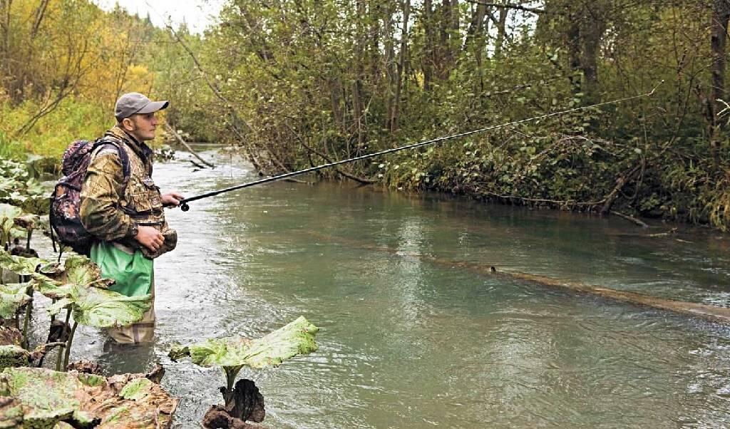Рыбалка на телецком озере