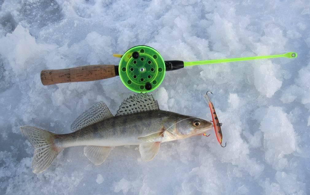 Зимние балансиры на судака — особенности выбора