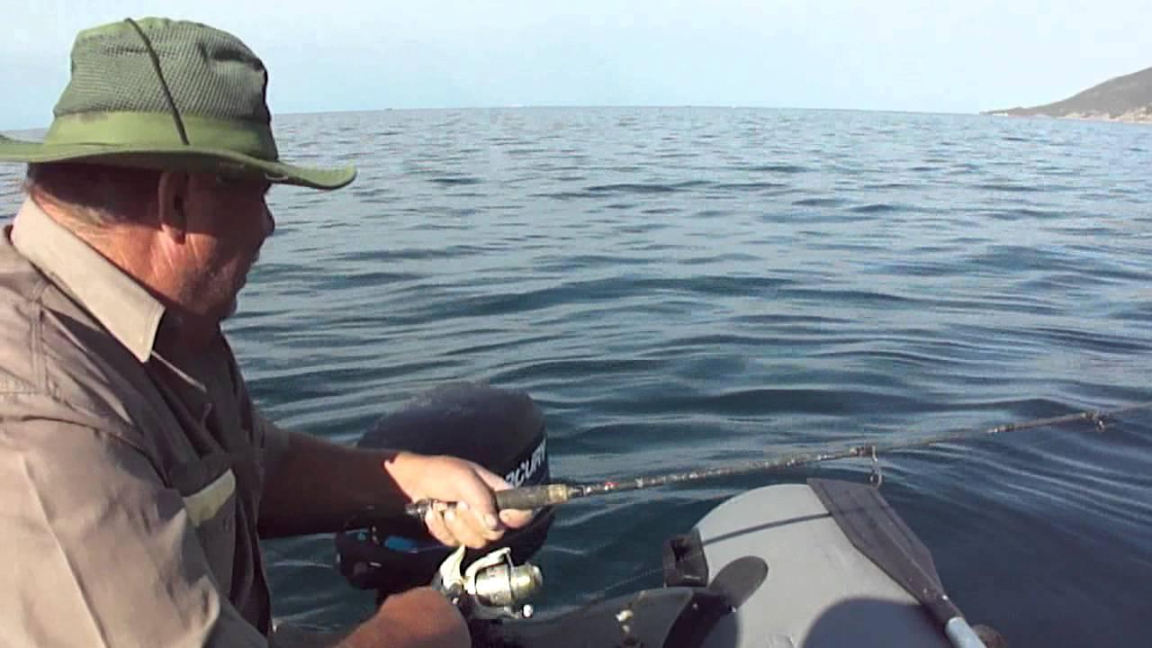 Морская рыбалка в сочи с берега. на что ловить ставридку и кефаль с берега?