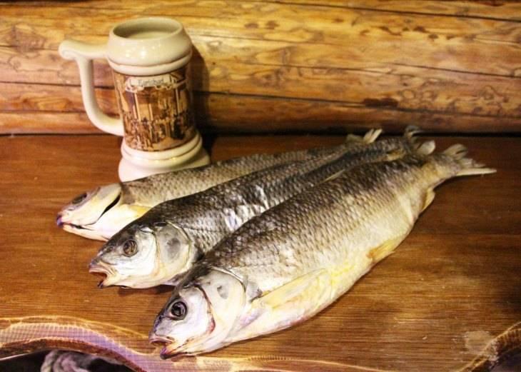 Кутум рыба. описание, особенности, виды, образ жизни и среда обитания кутума | животный мир