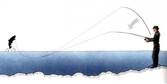 Рыбалка на спиннинг: техника ловли, ужение, вываживание, подсечка