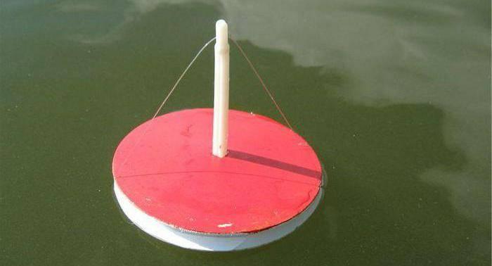 Все тонкости рыбалки на кружки для начинающих