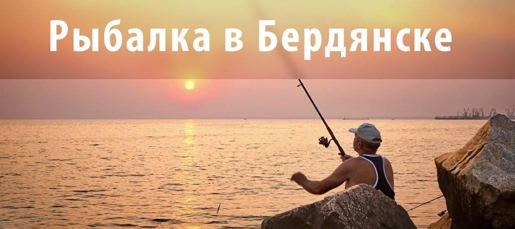 Крючки, наживка, лодка – готовимся к рыбалке в Бердянске